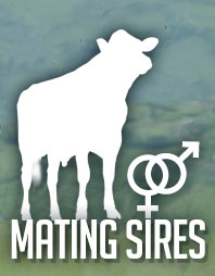Mating Sires
